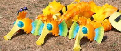 Seahorses costumes